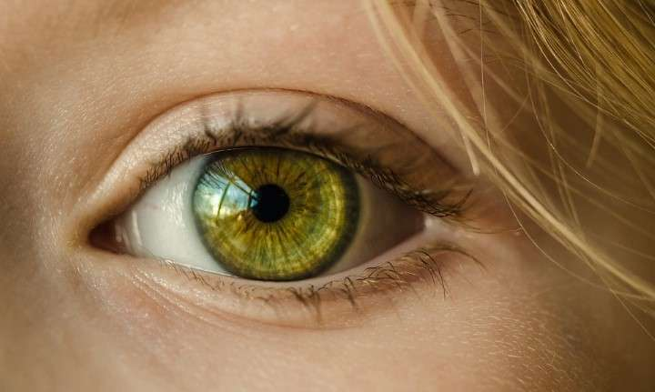 Diagnoza v očeh - Iridiologija