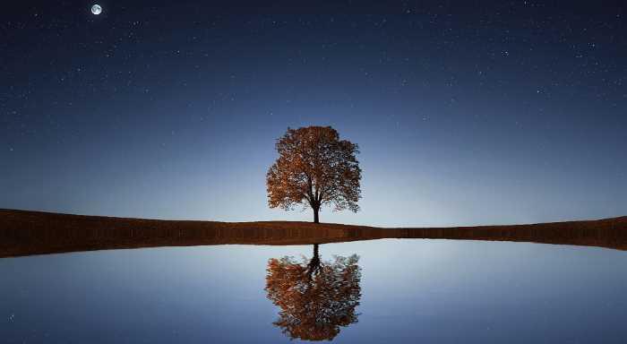 Ucenje in rast preko zavesti in vibracije