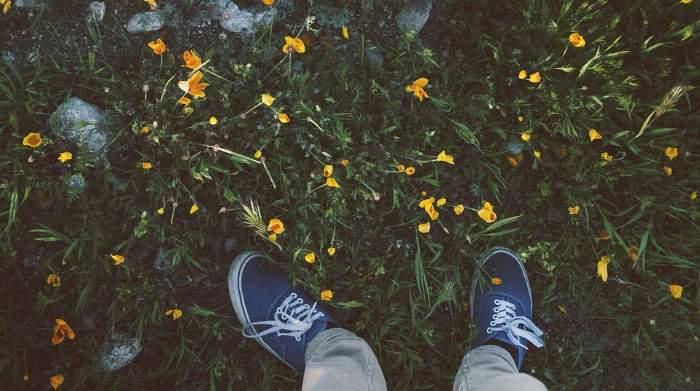 beg v puljenje plevela