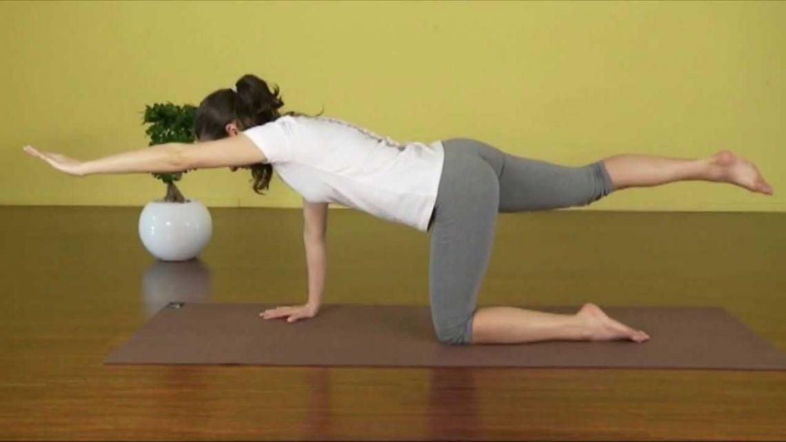 Zdrava hrbtenica Zavestne vaje za hrbtenico