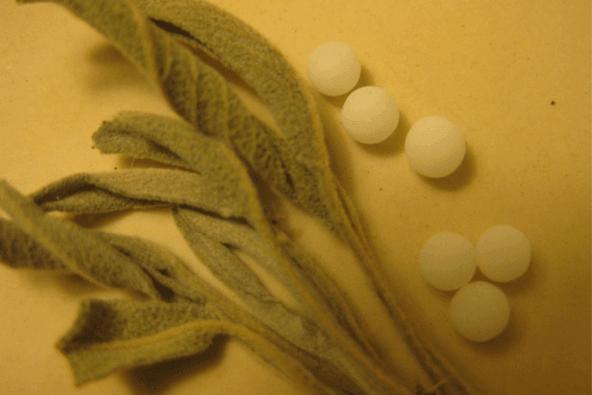 homeopatija m