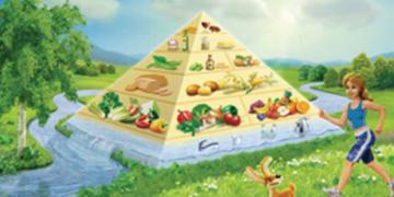 Prehranjevalna piramida za vegane m