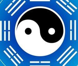 kitajska medicina m e