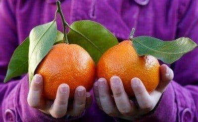 Zavesten odnos do hrane vegetarijanska prehranska piramida