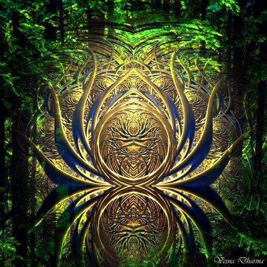 zacarani gozd