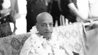 The Lord Being Absolute There is No Difference Between His Name and Himself Prabhupada