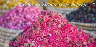 Shana Flogie, sporočilo