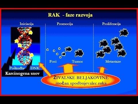 Beljakovine za ivljenje in smrt