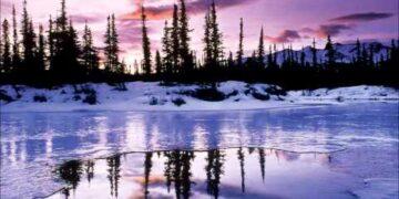 Music Aromatheraphy Sound of Nature