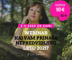 Webinar z Lili Sorum