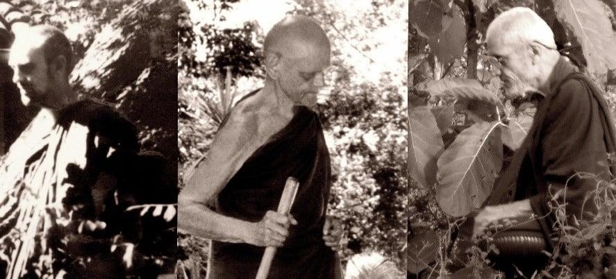 menihovi zapisi