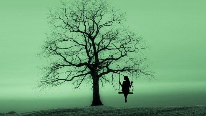 Dve drevesi, ena veja 5