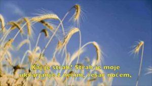 Abraham-Hicks: Strah povzročate sami (Fear Is All About You)