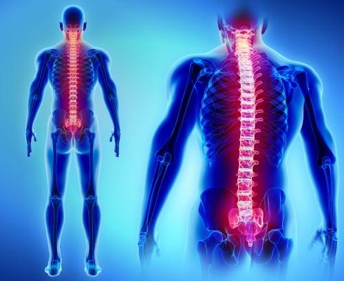 Ali ste vedeli, da se na stres najhitreje odzivajo mišice? 4