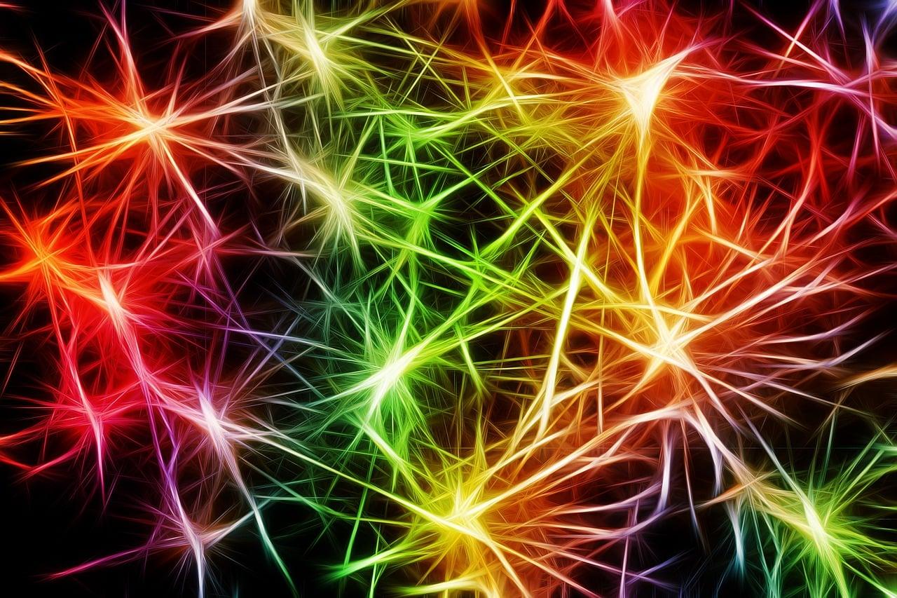 Kako deluje um? 1