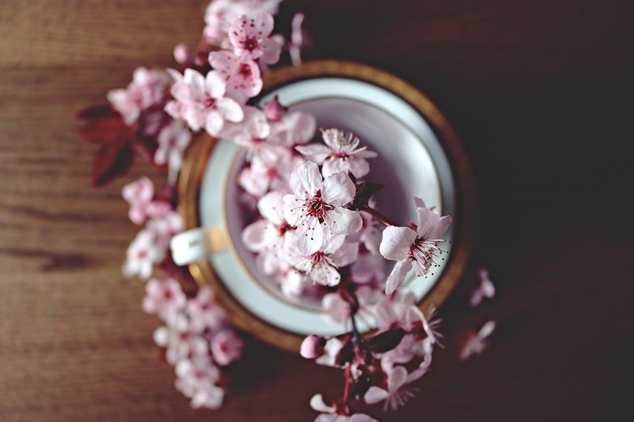 Numerološka napoved Maj 2019: Maja bo pokalo po šivih! 7