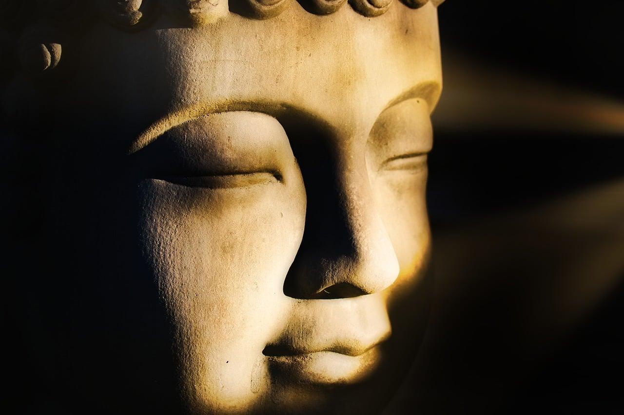 Buda: Zamera do drugih ljudi v nas raste kot strup 14