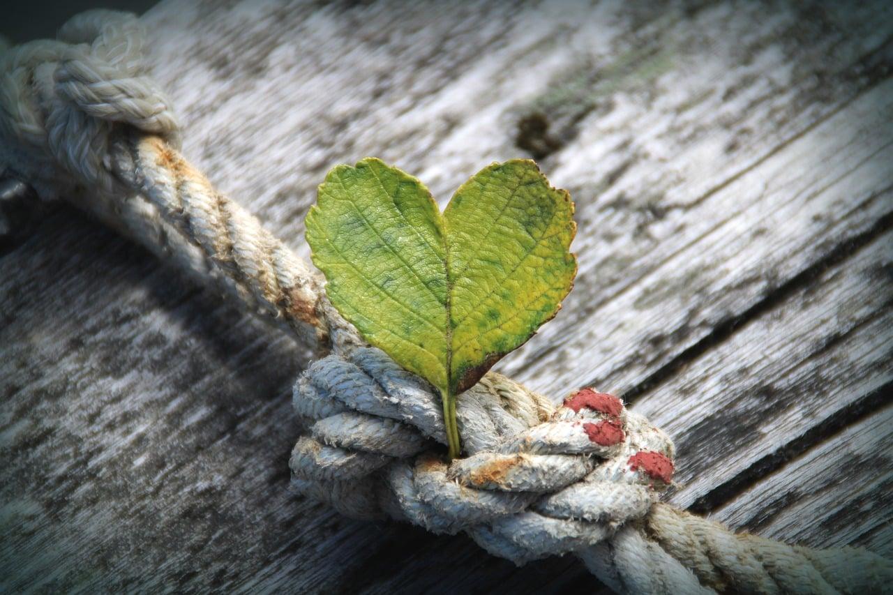 Numerološka napoved od 5.8. do 11.8.2019: Mojster ljubezni do sebe 7