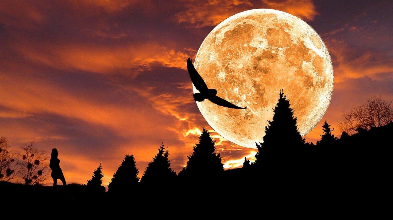 Oktobrska polna Luna prinaša priložnost iz krize 16