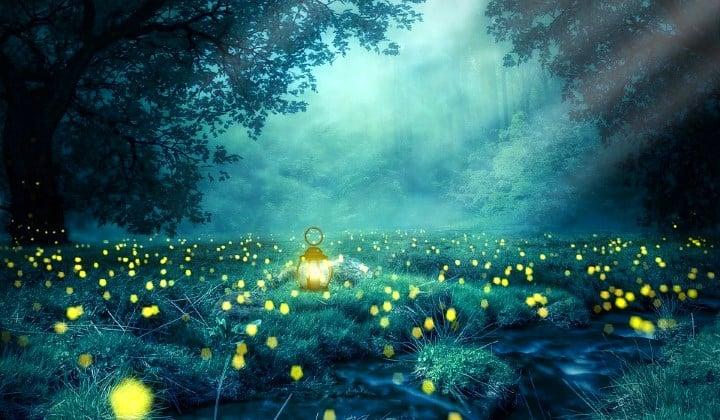 Sanje se hranijo z našimi preteklimi in sedanjimi psihičnimi doživetji 3