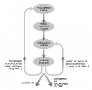 Energijsko-informacijsko poseganje v biopolje človeka 8