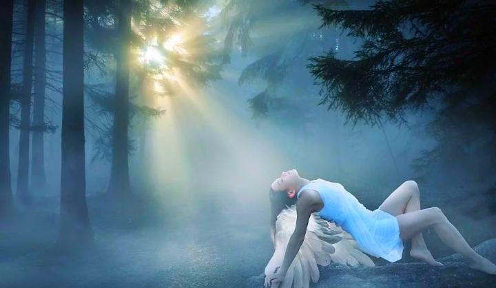 Sporočila duhovnih mojstrov iz prostora med življenji 10