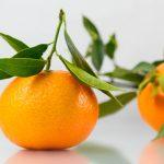 Mandarine, oranžne varuhinje jeter