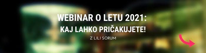 Lili Sorum: Leto 2021 bo čas dinamičnih sprememb 7
