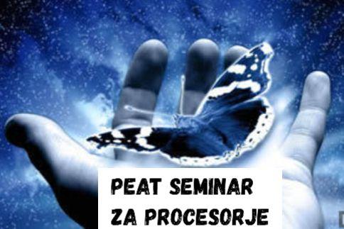 PEAT- seminar za procesorje