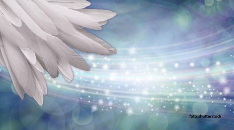 Astrološki reading: SPOROČILA TVOJIH ANGELOV 1