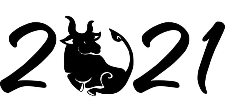 Kitajski horoskop za vsa znamenja za leto 2021 2