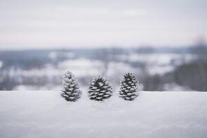snow-b4f26b24