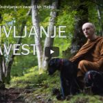 Luč Dhamme: Doživljanje in zavest