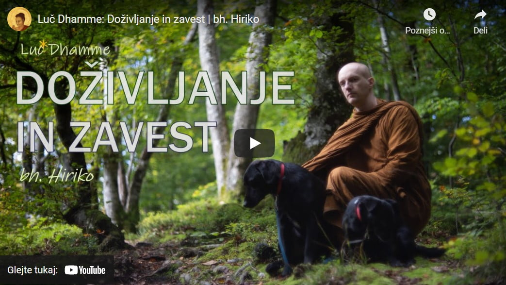 Luč Dhamme: Doživljanje in zavest 2