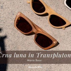 Seminar: Črna luna in Transpluton 11